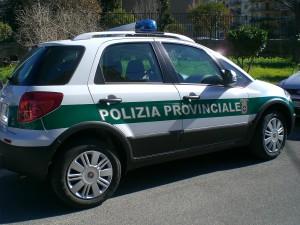 Auto_polizia_provinciale